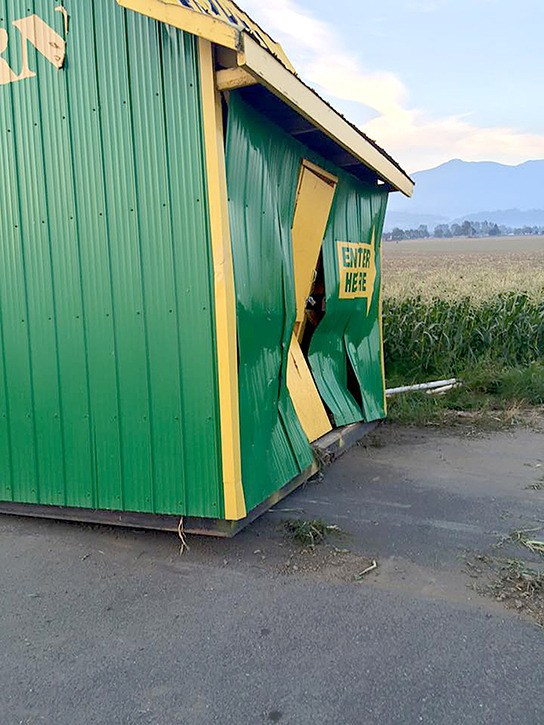 A vandal used a white pickup truck to ram into this corn barn on four separate occasions