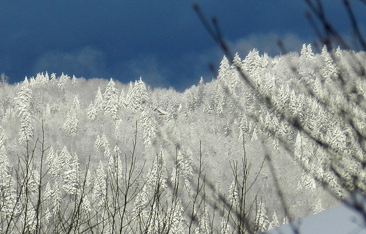 Sunlight breaks through on Chilliwack Mountain Sunday morning.