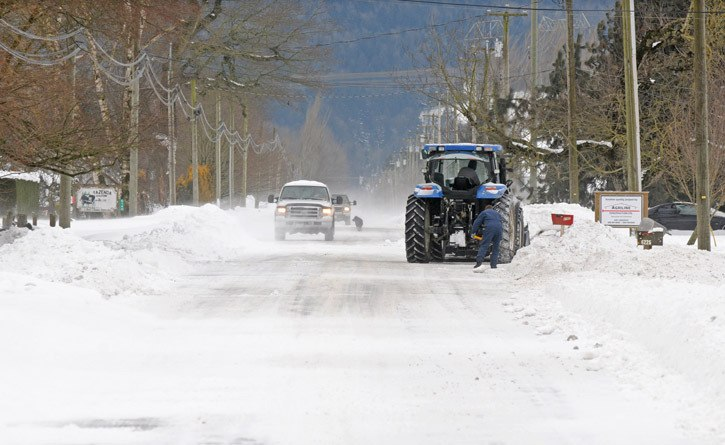A dog wanders along Sumas Prairie Road as people drive and dig through drifting snow on Thursday morning.