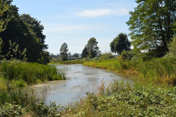 A followup public consultation session on the Camp Slough Enhancement Project is set for Oct. 12