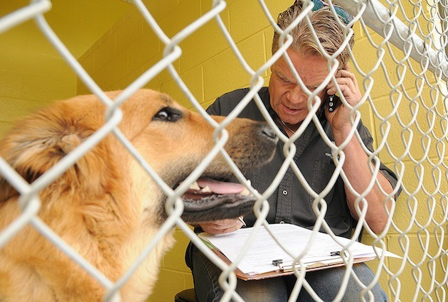 SPCA supporter Ken Popove is once again planning to take part in the Kennel Lock-In at the Chilliwack SPCA on Aug. 26.