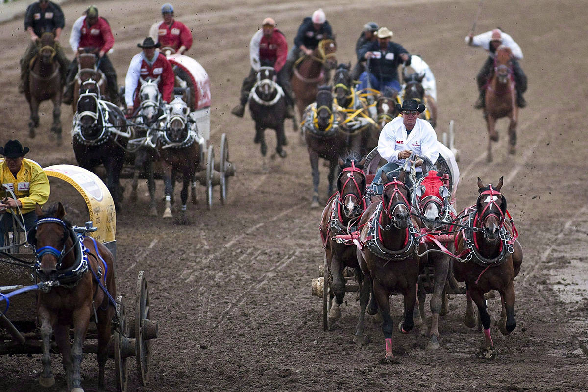 Teams compete in a chuckwagon race at the Calgary Stampede in Calgary, Monday, July 12, 2010. A horse has died from an injury that occurred during a chuckwagon race at this year's Calgary Stampede. Stampede officials confirm something happened to the animal about halfway around the track during Wednesday evening's second heat of the Rangeland Derby. THE CANADIAN PRESS/Jeff McIntosh