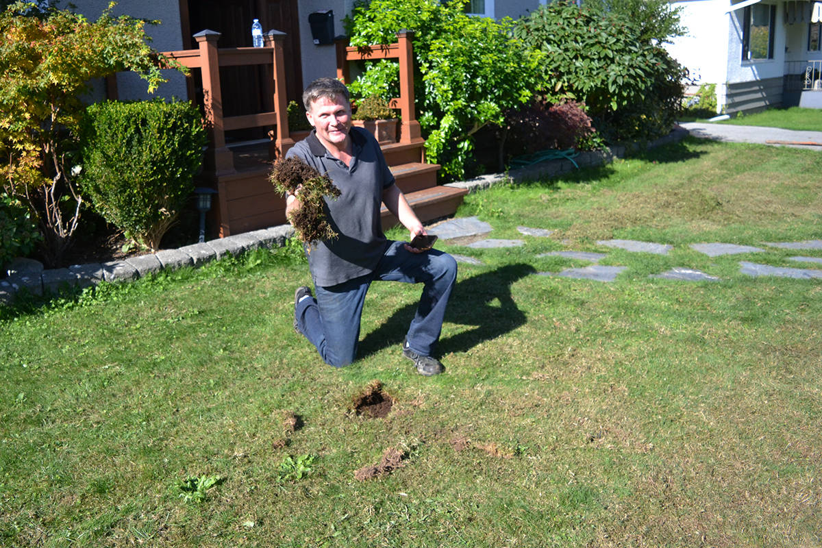 'Wham-bam out the door': Surrey man's front yard left ruined by scamming landscaper