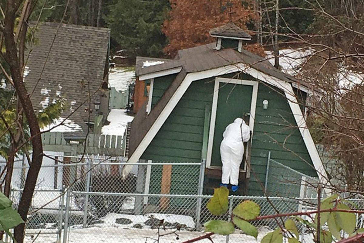 Chronic animal hoarder to be sentenced in Chilliwack court Friday