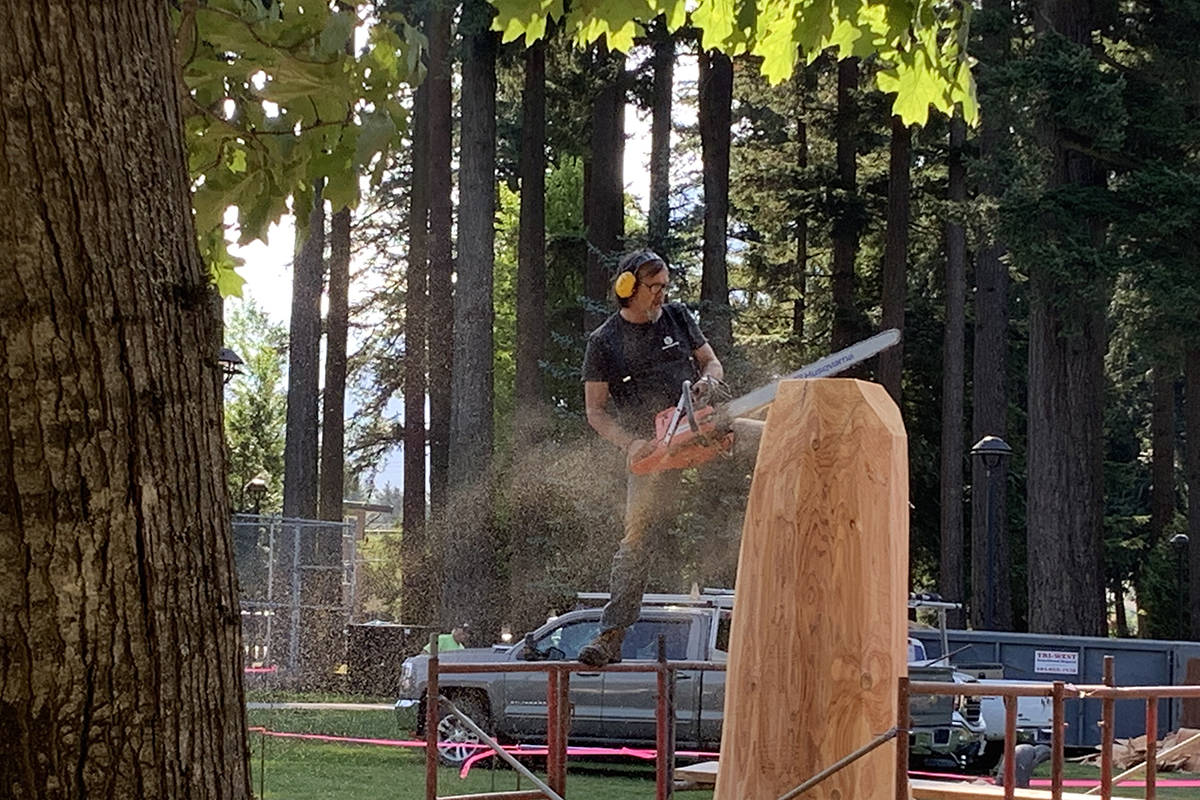Rocky LaRock takes to a scaffold to cut away the first slices of his piece at the 2019 Chainsaw Carving Competition in Hope in 2019. This weekend's event will be a much smaller carving event, featuring carvers including Ryan Villiers who has designed Hope's newest work ��� a carving of John Rambo. (Jessica Peters/ Black Press)
