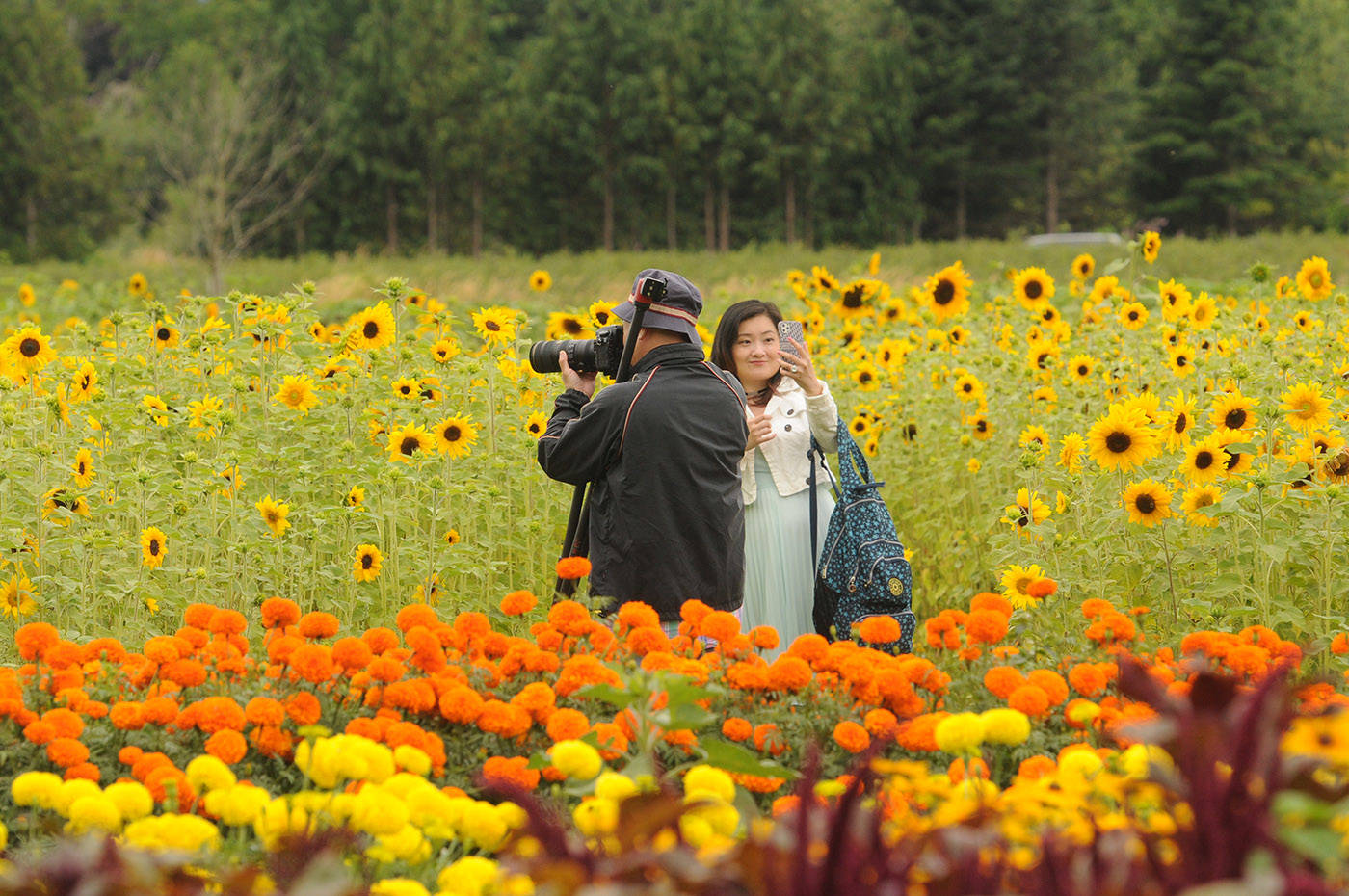 Visitors take in the bright colours of the Cultus Lake Flower Fest on opening day Saturday, July 17, 2021. (Jenna Hauck/ Chilliwack Progress)