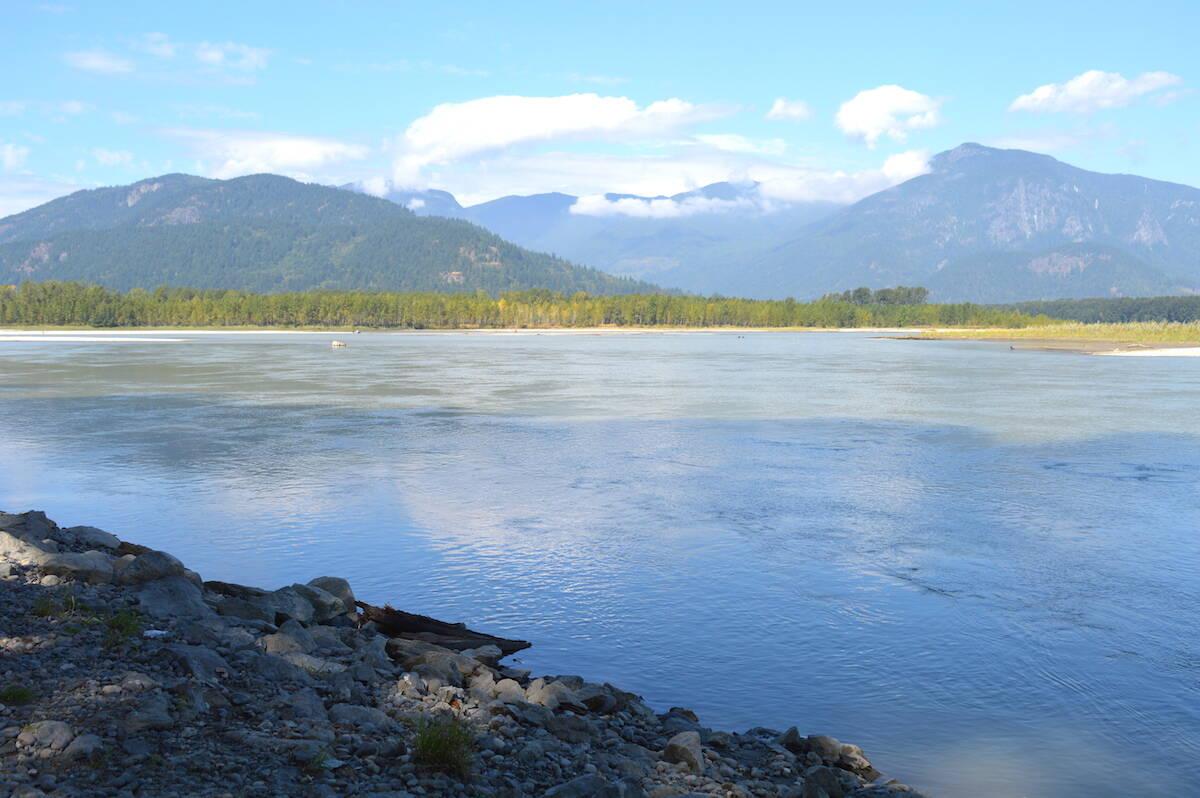 Fraser River from Peg Leg gravel bar near Chilliwack. (Jennifer Feinberg/ Chilliwack Progress file)
